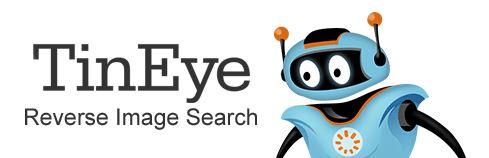 TinEye.com Image Search Service